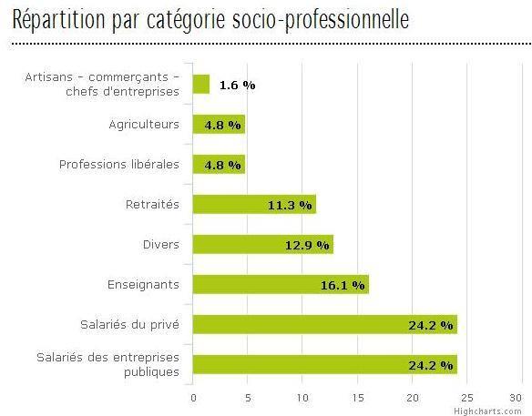 répartition par catégorie socio professionnelle